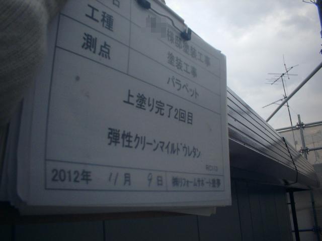 20121230Msamatei17.JPG