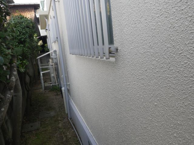 20130324Tsamatei26.JPG
