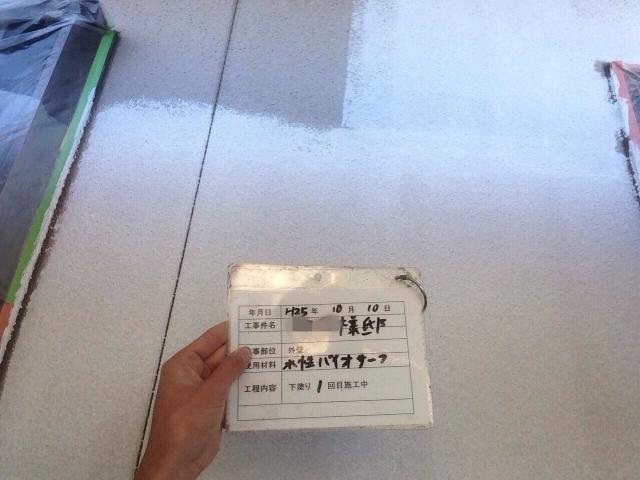 20131108Gsamatei12.JPG