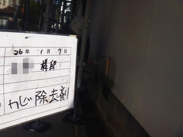 20140307Msamatei12.JPG