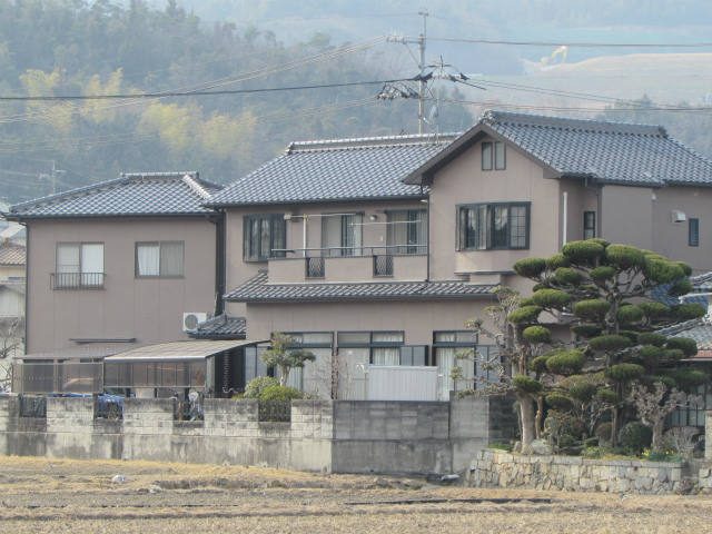 20170310Tsamatei12.jpg