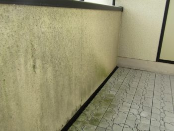 ベランダの外壁のカビ