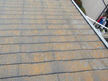 屋根の施工前は苔が生えている