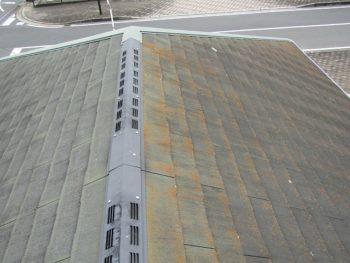 屋根の北側が苔だらけになっている