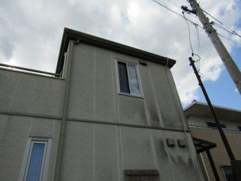 カビが生えた外壁