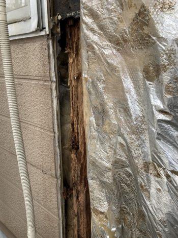 雨漏り箇所のサイディングを剥がす